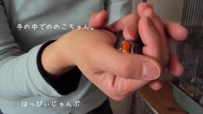 DSC09461_convert_20130401085441.jpg