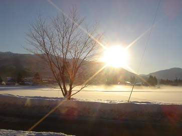 寒い朝です2028