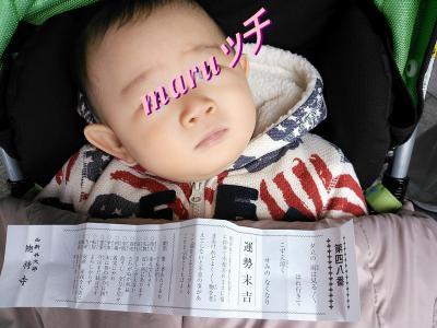 初詣 2013 西新井大師(2)