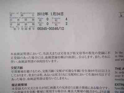 DSCF2061_convert_20120210162747.jpg