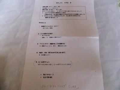 DSCF4101_convert_20120606175806.jpg