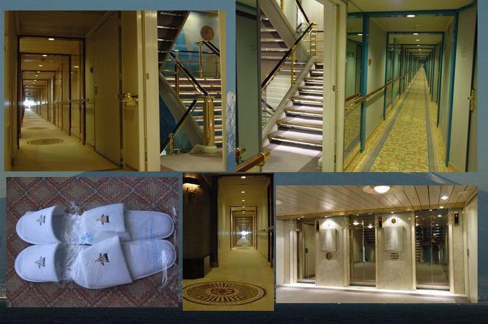 廊下、エレベーター、階段