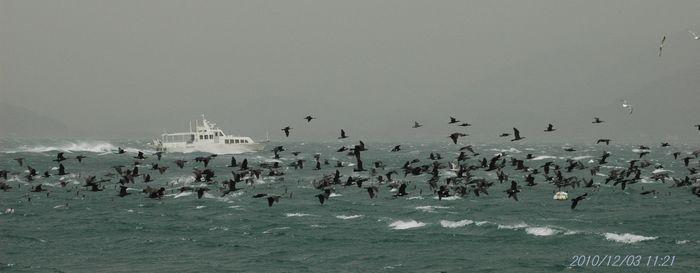 時化る海10