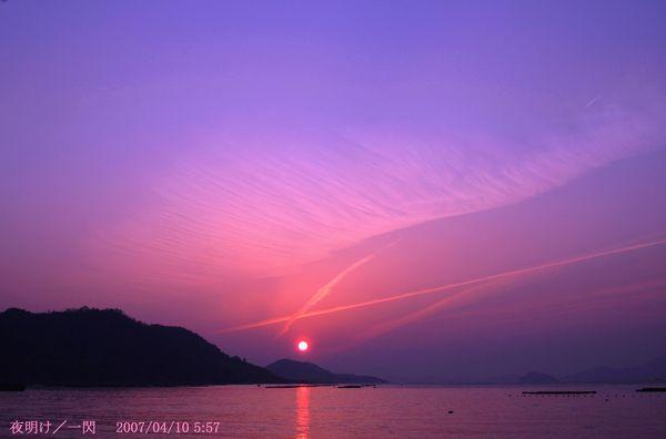 紫の夜明け