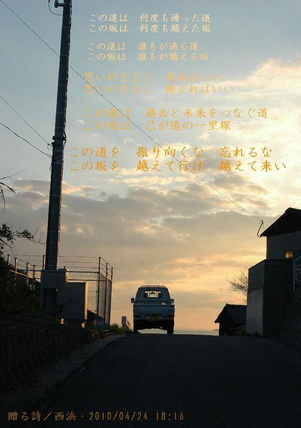 4,20NIKON 115
