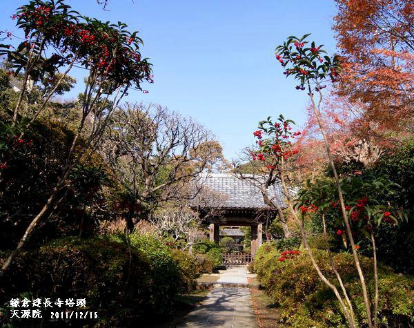 2011,12,15鎌倉s 096