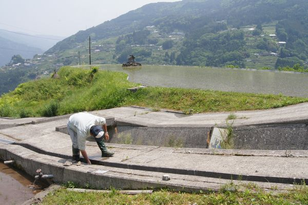 高知県八畝棚田  水路