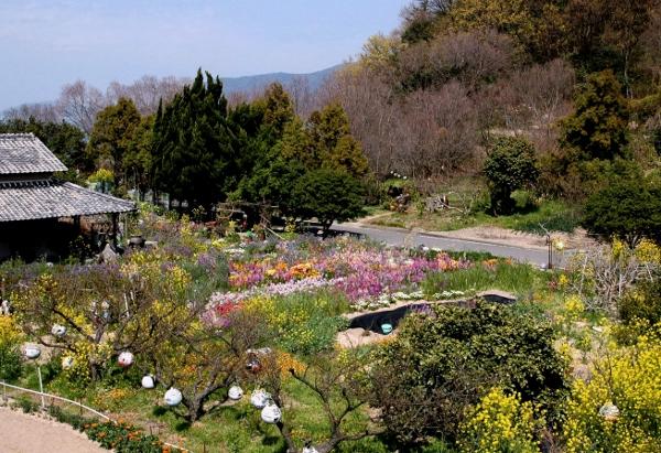 えっちゃんの花園 (600x411)