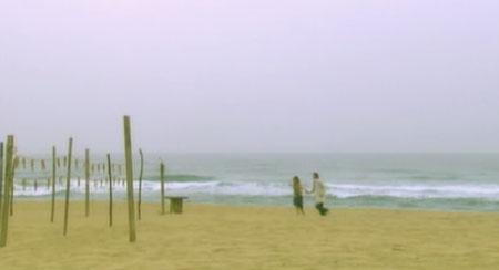 海辺でたわむれる