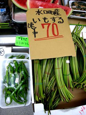 水口野菜01