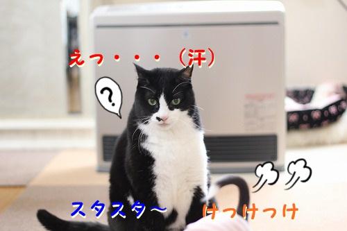 パークVSぽて (9)