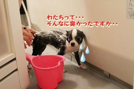 お風呂 ♪ (1)