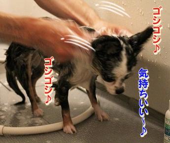 お風呂 ♪ (16)