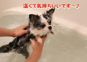 お風呂 ♪ (11)