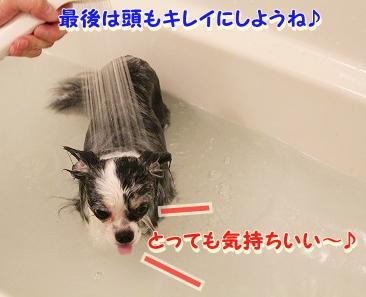 お風呂 ♪ (27)