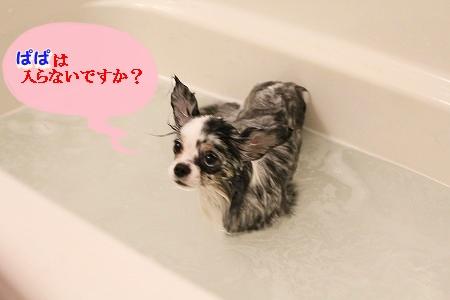 お風呂 ♪ (25)