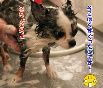お風呂 ♪ (22)