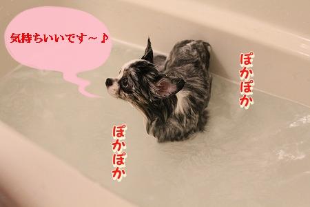 お風呂 ♪ (24)
