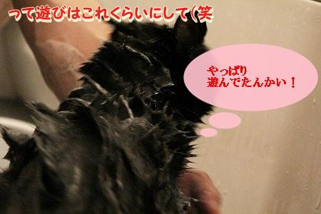 お風呂 ♪ (43)