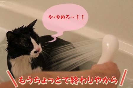 お風呂 ♪ (53)