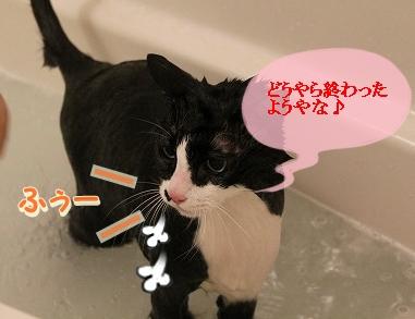 お風呂 ♪ (51)