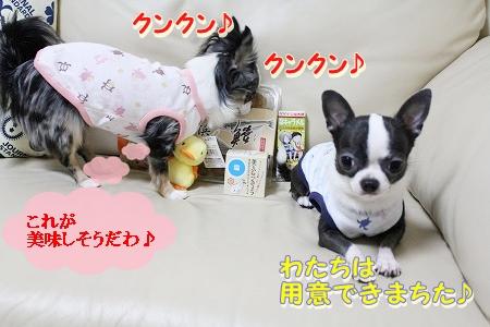 プレゼント♪ (6)