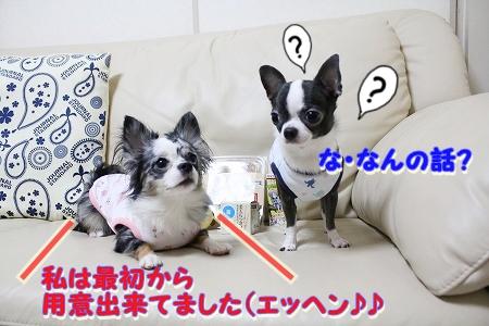 プレゼント♪ (9)