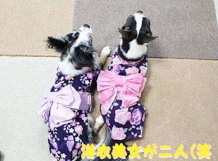 浴衣♪ (1)