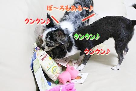 プレゼント~♪  (5)