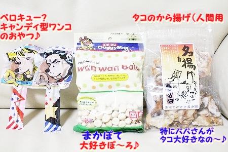 プレゼント~♪  (3)