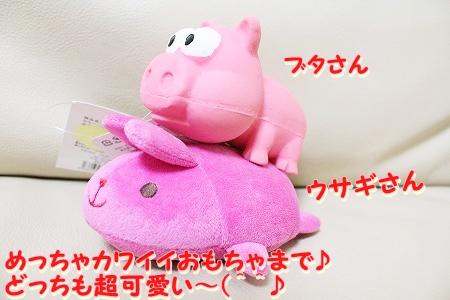 プレゼント~♪  (4)