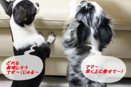 プレゼント~♪  (2)