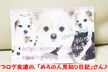 プレゼント~♪  (1)