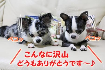 プレゼント~♪  (9)