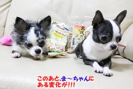 プレゼント~♪  (7)