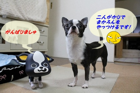 妹登場~♪ (4)