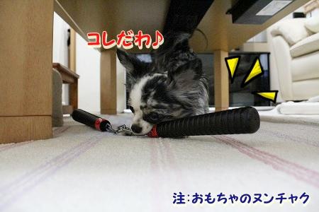 戦うまかろん♪  (5)