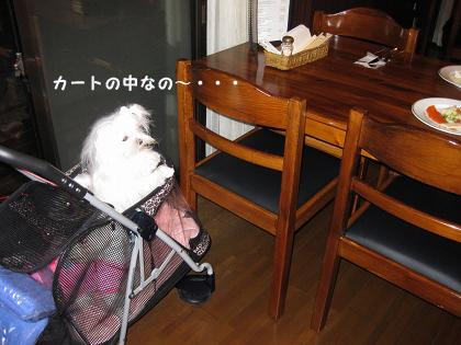 20101022-23-091.jpg