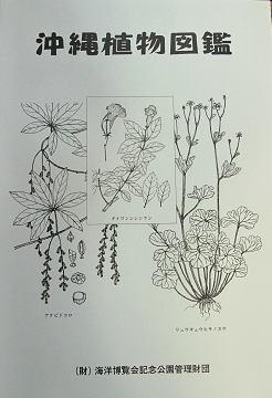 沖縄植物図鑑10.11.7