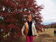tanukiko-20141116-03s.jpg
