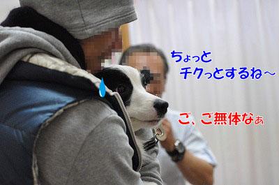 201102-waku2.jpg