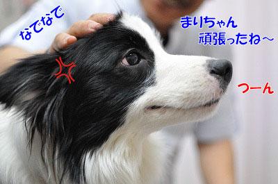 201102-waku3.jpg