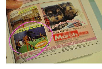 201103-wan2807.jpg