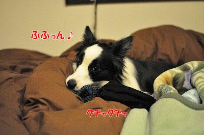 201104-egao0504.jpg