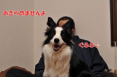 201104-egao0510.jpg