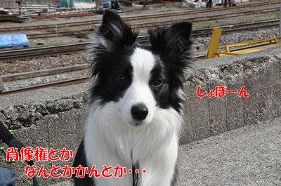 201104-rail0306.jpg