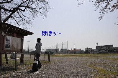 201104-saku1007.jpg
