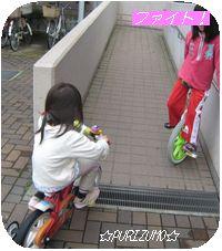 IMG_5443-1.jpg