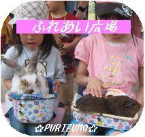 IMG_6233-1.jpg