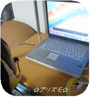 IMG_6548-1.jpg